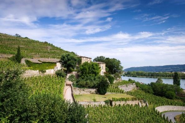 chateau-grillet-terrasses-sur-rhone-700x466